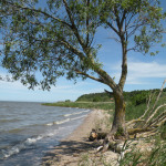 Plaża przy granicy z Rosją